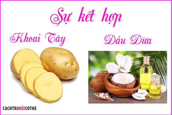 sự kết hợp của khoai tây và dầu dừa